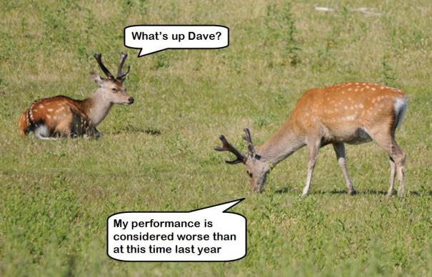 Deer performance conversation