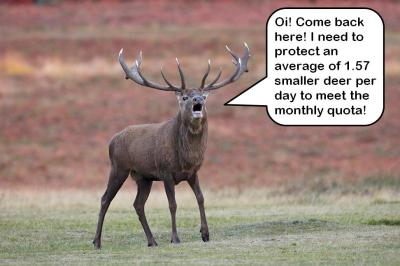 Deer vs monthly quota
